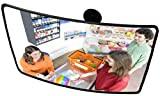 O&W Security - Espejo de vigilancia (Medidas: 40 x 60 cm)